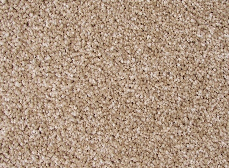 Mathews And Parlo Carpet You Deserve It Soft Honey