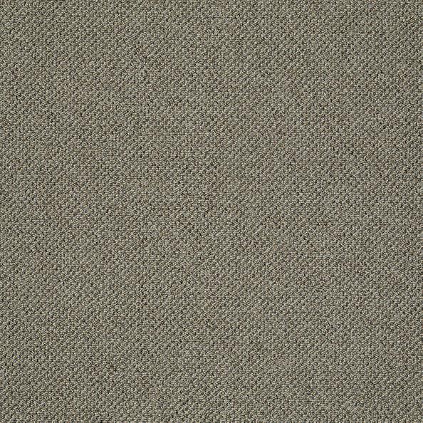 Carpet Monument 22 52marker 1st